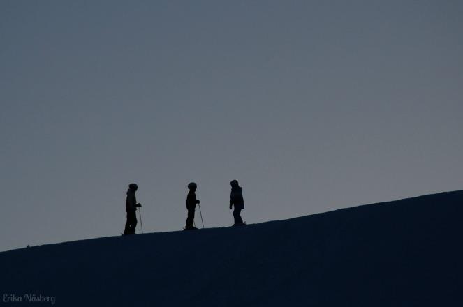 Skönviksbacken, februari 2013