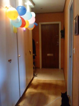 Födelsedagspimpad lägenhet (2010)
